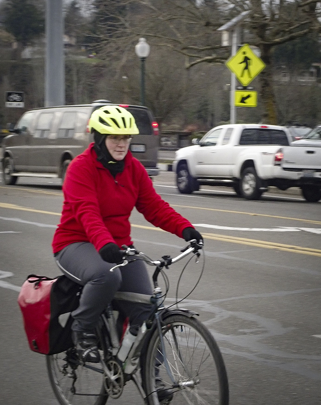 Winter Bicycle Commuter