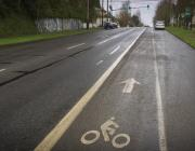 image of bike lane on 4th Ave.
