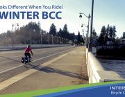 Winter BCC image