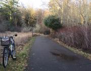 photo of bike by trail